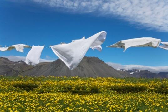 Enzymes in Laundry Detergents - Bio Detergents